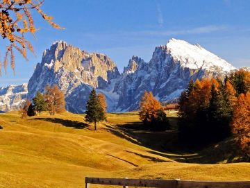 Golden autumn on the alpe di siusi